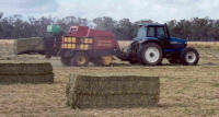 Big Square Hay Baling