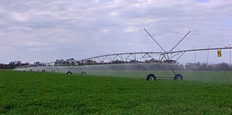 Linear Spray irrigator